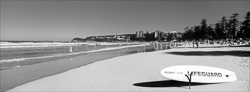 Manly_Panoramic_BW_Photos001.jpg