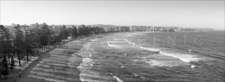 Manly_Panoramic_BW_Photos019.jpg