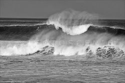 Manly_Beach_Surfing_Black_and_White_Photos_010.jpg
