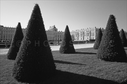 Versailles_Castles_Black_and_White_Photos_001.jpg