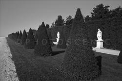 Versailles_Castles_Black_and_White_Photos_002.jpg