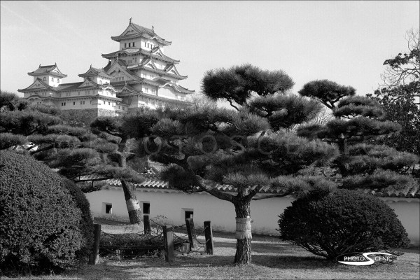 Japan Black and White Photos