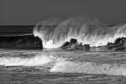 Manly_Beach_Surfing_Black_and_White_Photos_008.jpg