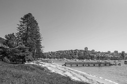 Forty-Baskets-Beach-Manly001.jpg