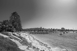 Forty-Baskets-Beach-Manly002.jpg