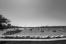Forty-Baskets-Beach-Manly005.jpg