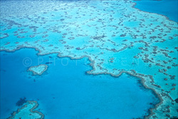 The_Great_Barrier_Reef_Scenic_Colour_Photos_003.jpg